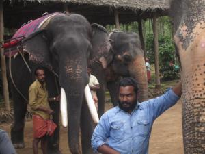 Mahouts with Elephants in Thekkady, Kerala, India
